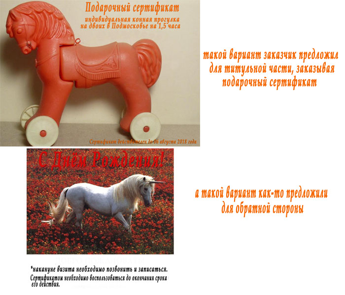 Конные прогулки в Москве по записи - Наша идея подарка любимому человеку: конная прогулка для двоих